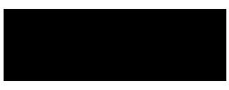 Polar Skate logo